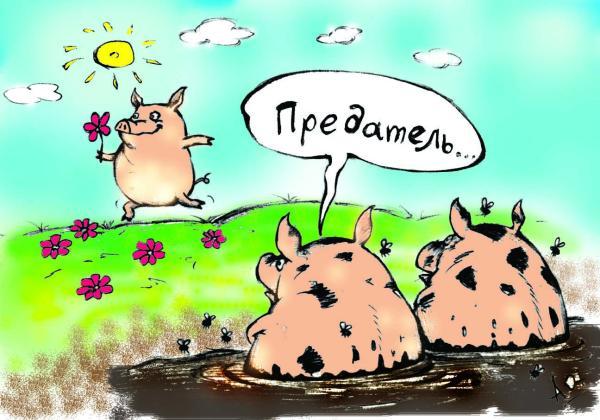 http://dlyavas.ru/images/fotogal/6/2004-02-20_171143_pigs.jpg